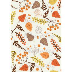 Őszi  levelek – ágak