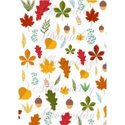 Őszi nagy levelek