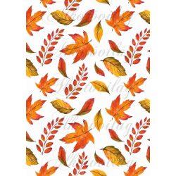 Őszi levelek a narancs árnyalataival