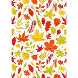 Citromsárgás, narancsos, zöldes őszi levélkavalkád