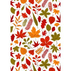 Pirosas, narancsos, zöldes őszi kavalkád