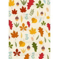 Színes őszi levelek makkokkal