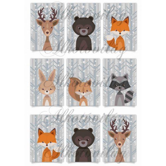 Téli állatok kártyákon