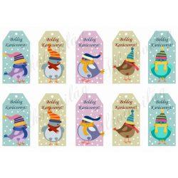 Tüneményes kismadarak sapiban, hóesésben üdvözlőkártyákon BOLDOG KARÁCSONYT felirattal