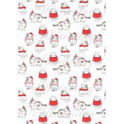 Cuki karácsonyi cicák sokasága