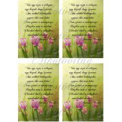 Tulipános blokk idézettel 4 db