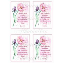 Jöjjetek én hozzám... bibliai idézet rózsaszín tulipánnal 4db