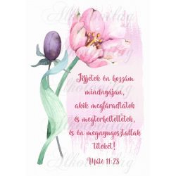 Jöjjetek én hozzám... bibliai idézet rózsaszín tulipánnal