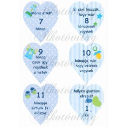 Mérföldkő kártyák születéshez fiús 7-12 hó ikreknek