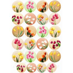Tulipánok gombokon