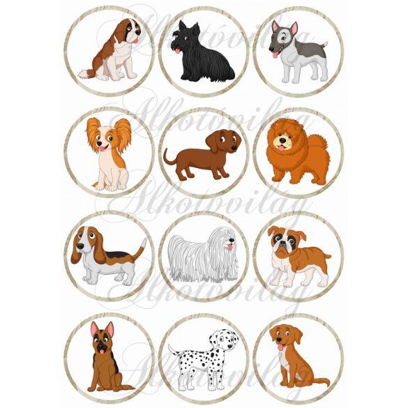 Kutyusok körökben