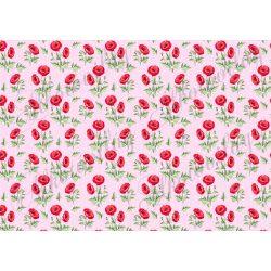 Pipacsok pasztell rózsaszín, fehér pöttyös háttérrel