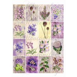 Gyönyörű virágos kártyák lila árnyalatban 6,5 x 5 cm