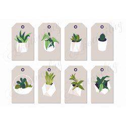 Kártyák szobanövényekkel