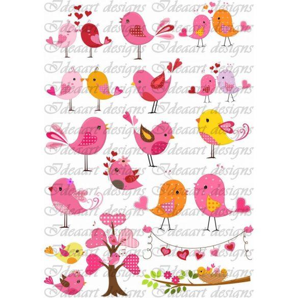 Jókedvű madárkák