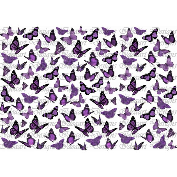 Pillangók lilában
