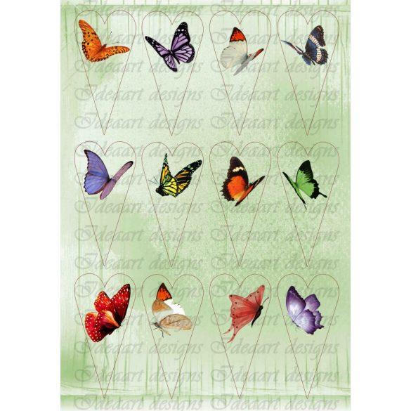 Pillangók szívekben