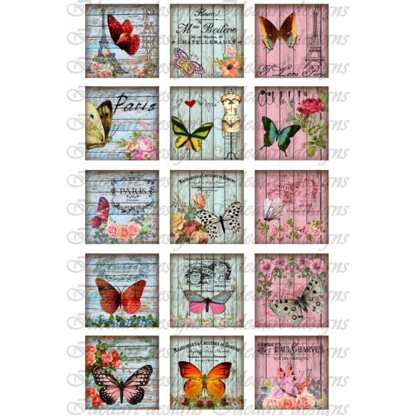 Pillangó kollázsok