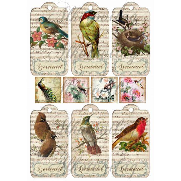 Madaras kártyák- szeretettel