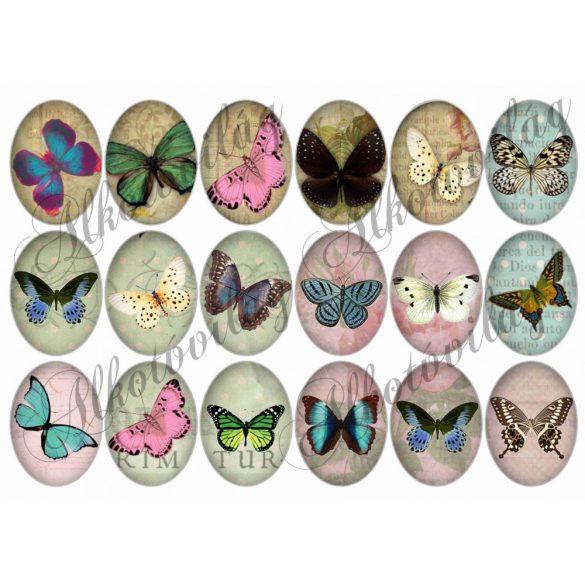 Pillangók oválisban