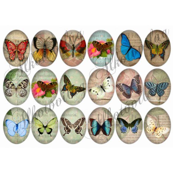 Pillangók oválisban 2