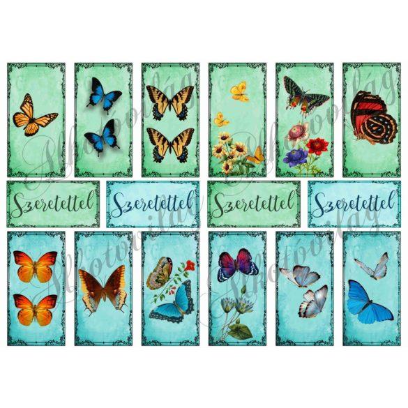 Pillangók téglalapokban - kékes