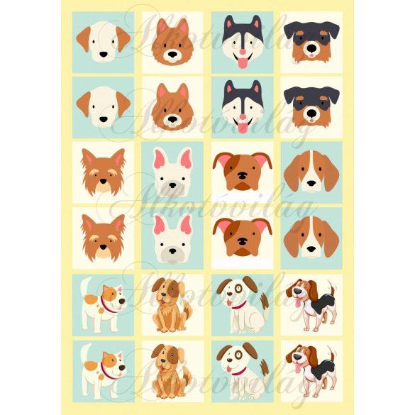 Memóriakártyák kutyusokkal