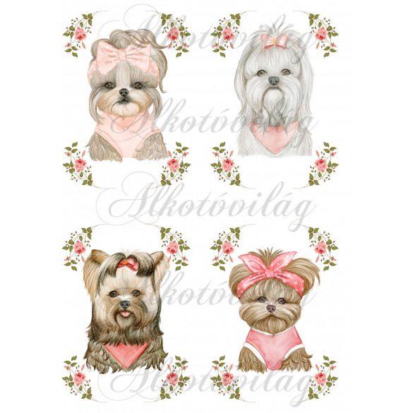 Tüneményes kutyusok rózsás keretben