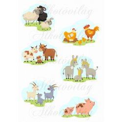 Háziállatok- bárány, tyúk, kecske, malac, tehén, szamár