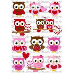 Szerelmes baglyocskák