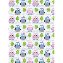 Baglyok- kék-rózsaszín