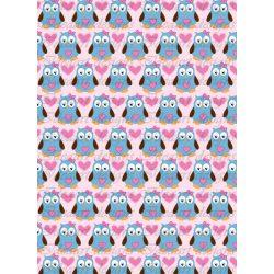 Baglyok kékben rózsaszín háttérrel