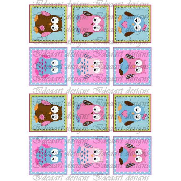 Baglyok pink-kék kisebben