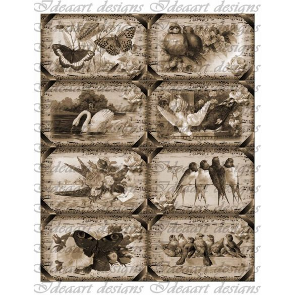Szabadon szépiában- vintage kártyák