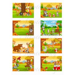 Alkoss mesét- mesélj a képekről állatok kártyák