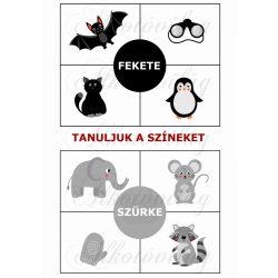 Oktatókártyák - TANULJUK A SZÍNEKET - FEKETE, SZÜRKE