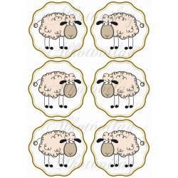 Bárány címkében 6 db