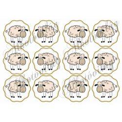 Bárány címkében 12 db