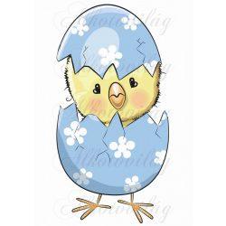 Kiscsibe kék tojásban