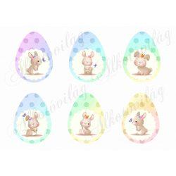 Tündéri nyuszik szivárványos tojásokon - nagyban