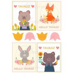 Tavaszi állatos kártyák