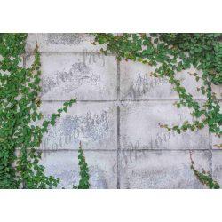 Fotóháttér apró borostyánnal kő falon termékfotózáshoz