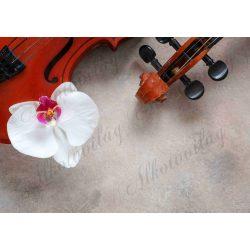 Fotóháttér hegedű részletekkel és fehér orchideával termékfotózáshoz