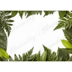 Fotóháttér levelekből álló kerettel termékfotózáshoz