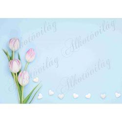 Fotóháttér lilás tulipánokkal és fehér szívekkel termékfotózáshoz