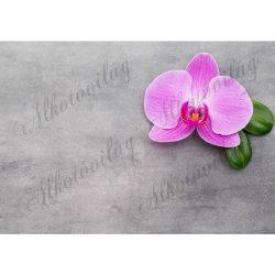 Fotóháttér pink orchideával szürke háttérrel termékfotózáshoz