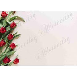 Fotóháttér piros tulipánokkal termékfotózáshoz