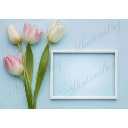 Fotóháttér tulipánokkal és képkerettel termékfotózáshoz