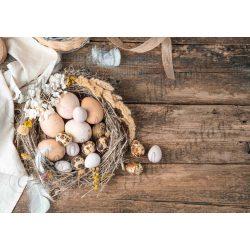 Húsvéti fotóháttér rusztikus fészekkel, tojásokkal, tollakkal fa deszkás háttéren termékfotózáshoz