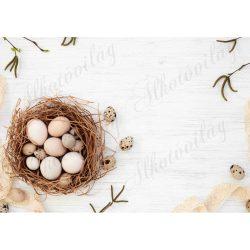 Húsvéti fotóháttér tojások fészekben, termésekkel termékfotózáshoz